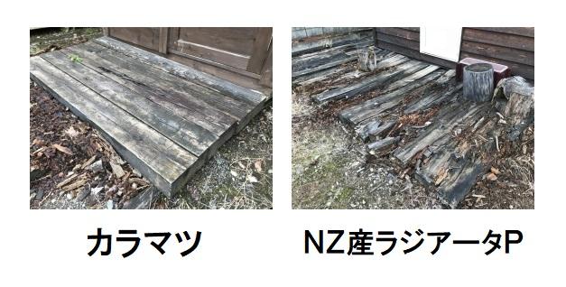 腐りにくい木材樹種もあり、建材に選ぶことは対策として良いですが、完全とは言い切れません。