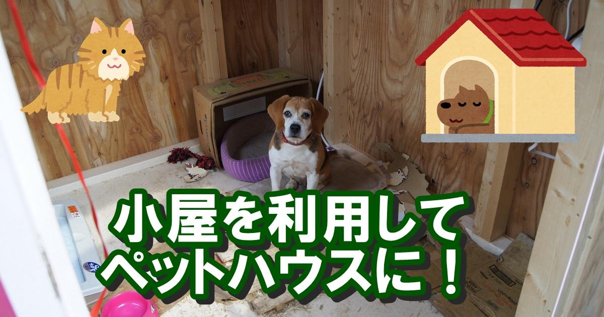 庭の小屋でニーズの猫小屋、犬小屋