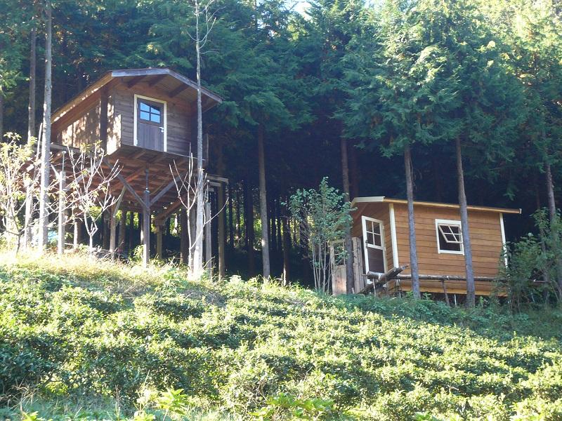 傾斜地の小屋からの眺めは、良いことが多いです。