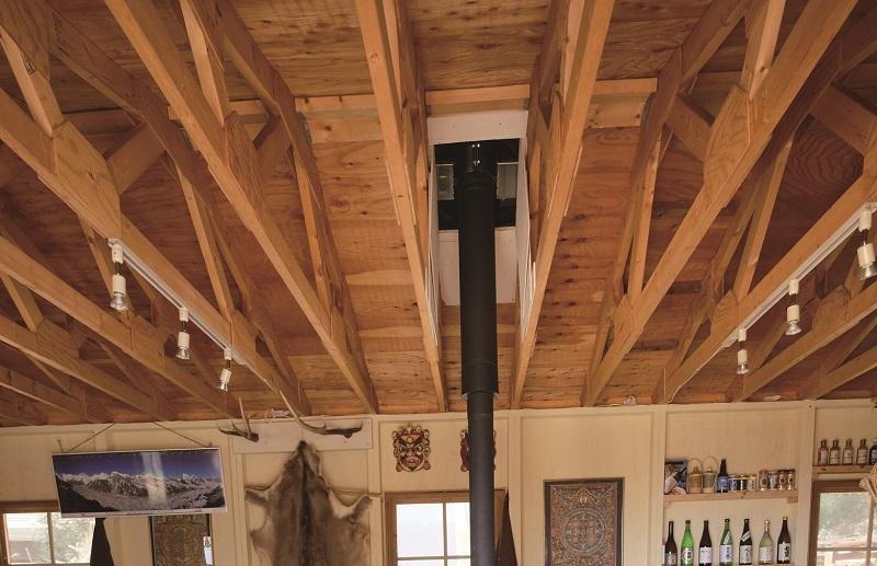 屋外の樹木から屋根をつたって室内に白蟻が入った例もあるそうです。