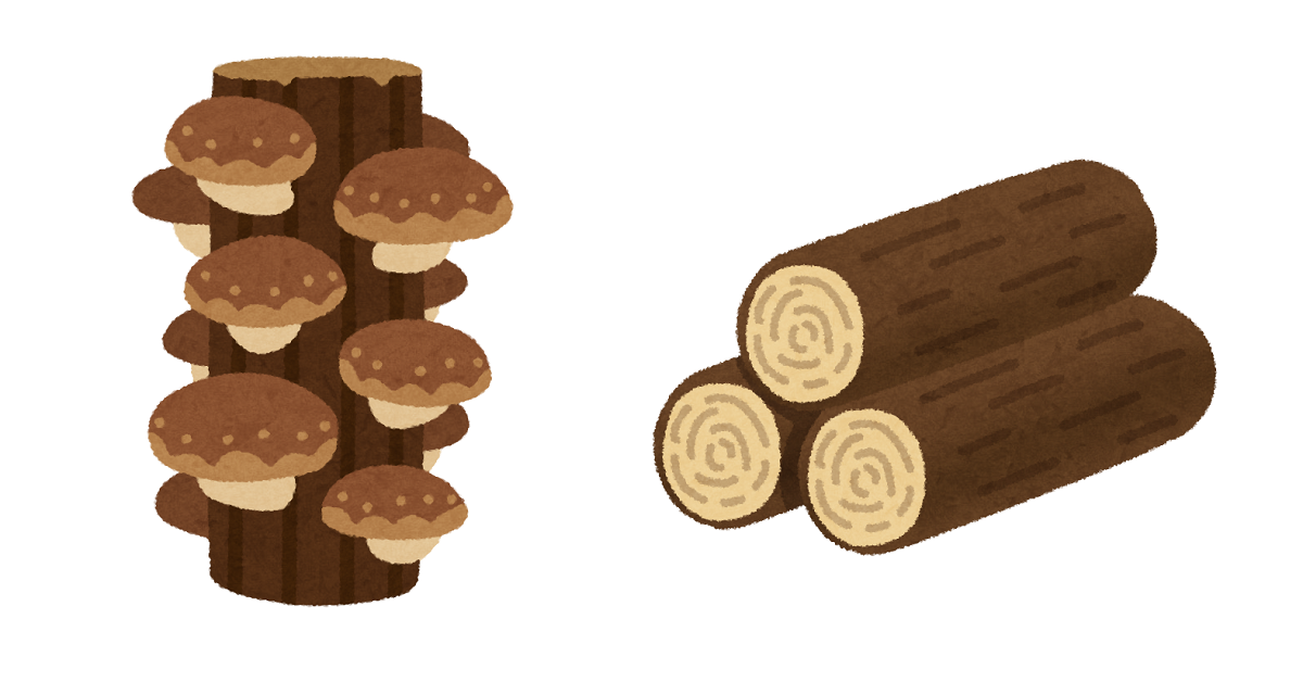 朽木はシロアリの好物なので、小屋の近くに置かないようにしましょう。